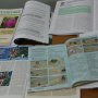 Состояние и перспективы физического воспитания в дошкольном образовательном пространстве города